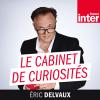 Podcast-France-Inter--Le-cabinet-de-curiosités-Eric-Delvaux.png