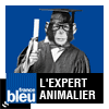Podcast france bleu L'expert animalier