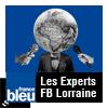 podcast-france-bleu-lorraine-les-experts.png
