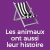 podcast-france-culture-les-animaux-ont-aussi-leur-histoire-Michel-Pastoureau-Mathilde-Wagman.png