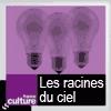 podcast-france-culture-les-racines-du-ciel.png