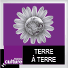 podcast-france-culture-terre-a-terre-Ruth-Stegassy.png