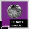 Podcast France cultures Culture monde avec Florian Delorme