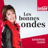 podcast-france-inter-Les-Bonnes-Ondes-Sandrine-Oudin.png